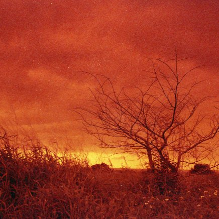 [FILM] TAIWAN - US tamsui street yongle DEC2016 Nikon FM(S) - Rollei Redscale 400 -003
