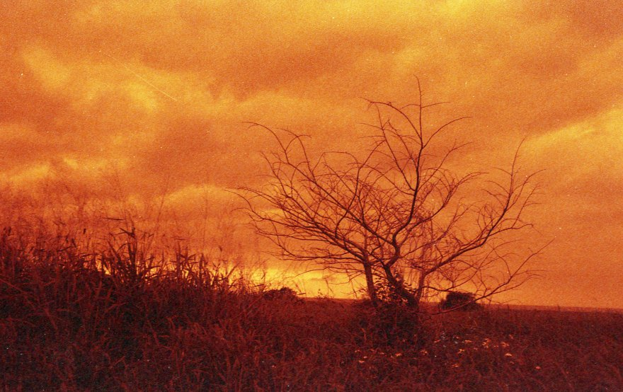 [FILM] TAIWAN - US tamsui street yongle DEC2016 Nikon FM(S) - Rollei Redscale 400 -005