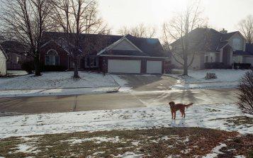 [FILM] USA christmas DEC2016 - Nikon FM (s) - Kodak Gold 200 -020