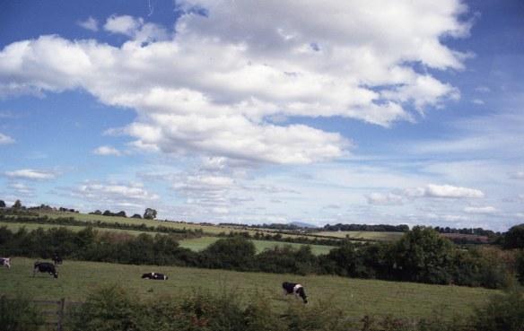 IRELAND - Cork - Guiness AUG2016 Nikon FM Fujifilm Xtra 400 -003